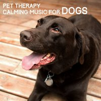 Pet Therapy - Calming Music for Dogs — сборник