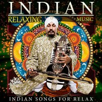 Indian Relaxing Music. Indian Song for Relax — D.J. Donovan, Indiana Music Orchestra