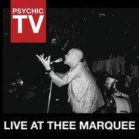 Live at Thee Marquee — Psychic TV