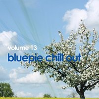 Chill Out, Vol. 13 — сборник