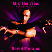 Mix The Vibe Series: David Morales Selection — сборник