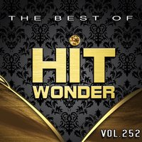 Hit Wonder: The Best of, Vol. 252 — сборник
