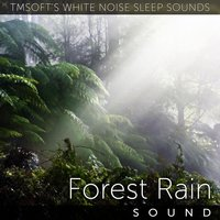 Forest Rain Sound — Tmsoft's White Noise Sleep Sounds