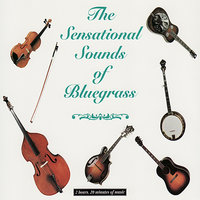 Sensational Sounds of Bluegrass Vol. 1 — сборник