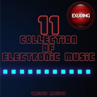 Collection of Electronic Music, Vol. 11 — сборник