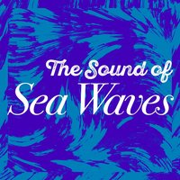 The Sound of Sea Waves — Beach Waves Specialists