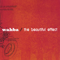 the beautiful effect — wahba