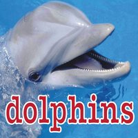 Dolphin Sounds — Dolphins