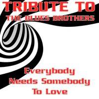 Everybody Needs Somebody to Love: Tribute to the Blues Brothers — Ronnie Jones