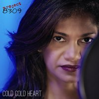 Cold Cold Heart — Project 8309