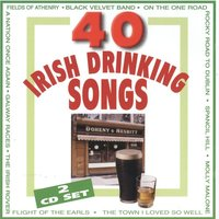 40 Irish Drinking Songs — Brian Roebuck