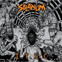 Into the Sinner Circle — Solanum