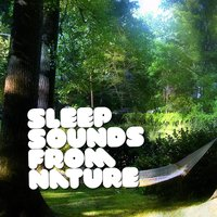 Sleep Sounds from Nature — Nature Sounds for Sleep and Relaxation, Nature Sounds Nature Music, Sonidos de la naturaleza Relajacion, Sonidos de la naturaleza Relajacion|Nature Sounds for Sleep and Relaxation|Nature Sounds Nature Music