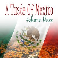 A Taste Of Mexico Vol 3 — сборник