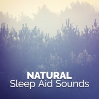 Natural Sleep Aid Sounds — Deep Sleep Nature Sounds