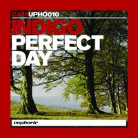 Perfect Day — Indigo