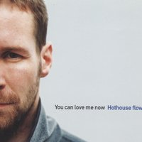 You Can Love Me Now — Hothouse Flowers