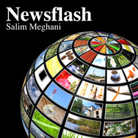 Newsflash — Salim Meghani