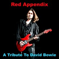 A Tribute To David Bowie — Red Appendix