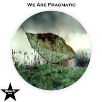 We Are Fragmatic — сборник