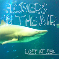 Lost At Sea — Flowers In The Air