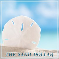 The Sand Dollar — Relaxing Piano Music, Relaxing Piano Music Consort