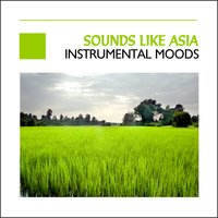 Sounds Like Asia - Instrumental Moods — сборник