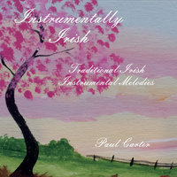 Instrumentally Irish — Paul Carter