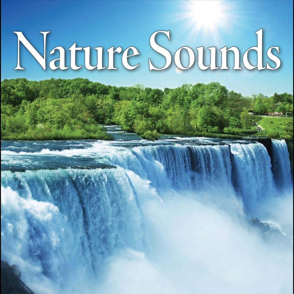 sounds music nature ocean classical sleep meditation beethoven water sleeping sound amazon relaxation wilderness rainshowers rain forest waterfalls spa deep