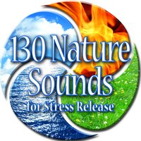 130 Nature Sounds for Stress Release — Sounds of Nature White Noise for Mindfulness, Meditation and Relaxation