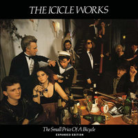 The Small Price Of A Bicycle — The Icicle Works