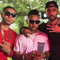 Put in Work — miztah Brown, Young Singh, Sagar G