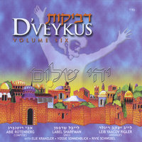 Dveykus, Vol. 6 — Label Sharfman & Abie Rotenberg