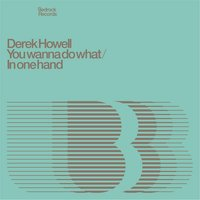 You Wanna Do What / In One Hand — Derek Howell