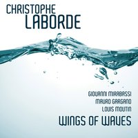 Wings of Waves — Louis Moutin, Mauro Gargano, Giovanni Mirabassi, Christophe Laborde