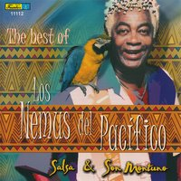 The Best Of — Los Nemus Del Pacifico