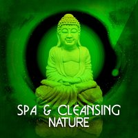 Spa & Cleansing: Nature — SPA Music