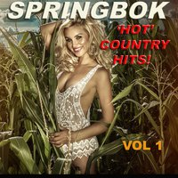 Springbok Hot Country Hits, Vol. 1 — Springbok