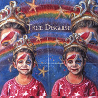 True Disguise — Joel Kaminer