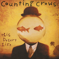 This Desert Life — Counting Crows