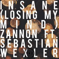 Insane (Losing My Mind) — Zannon