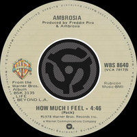 How Much I Feel / Ready For Camarillo — Ambrosia