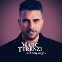 Don't Recognize You — Marc Terenzi