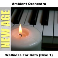 Wellness For Cats (Disc 1) — Ambient Orchestra
