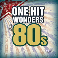 One Hit Wonders Of The 80s Vol. 1 — Count Dee's Hit Explosion