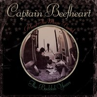 The Buddah Years — Captain Beefheart