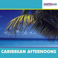 Carribean Afternoon — The Mick Lloyd Connection
