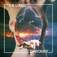 Evaporate — The Lungs