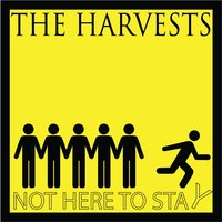 Not Here To Stay — The Harvests