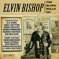 The Blues Rolls On — B.B. King, George Thorogood, Elvin Bishop, Ronnie Baker Brooks, Tommy Castro, James Cotton
